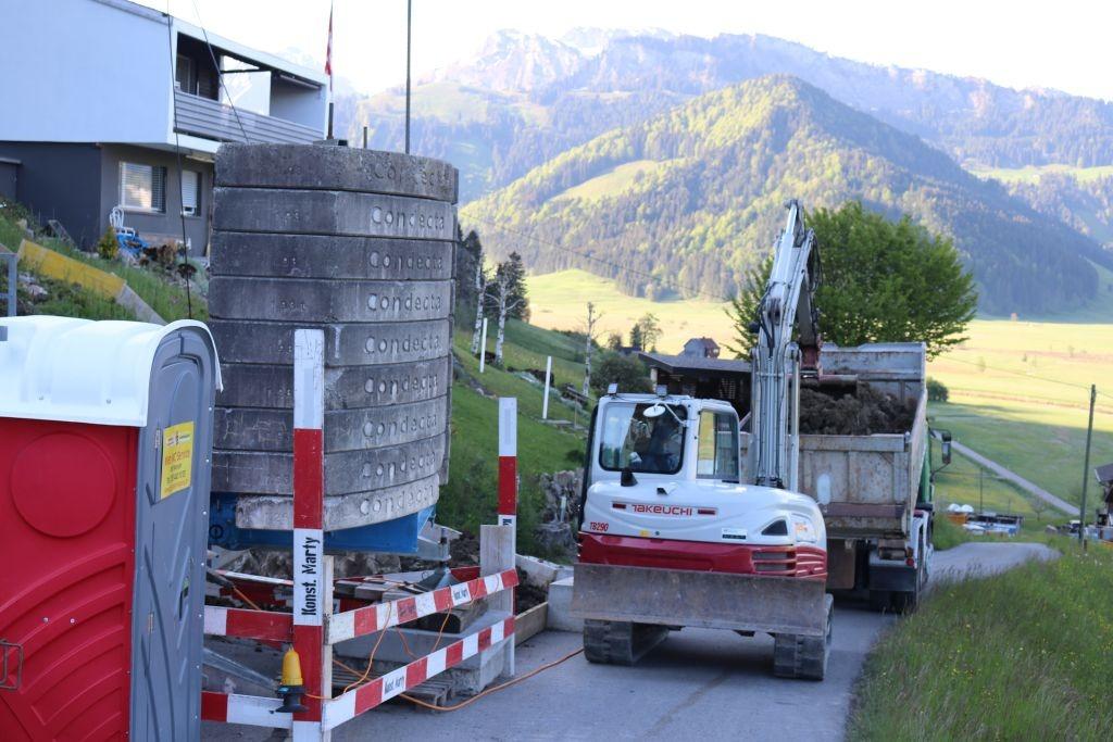 Umbau EFH, Höhport (5)